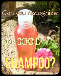 BeFunky_Shampoo .jpg
