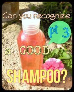 GoodShampoopt3.jpg